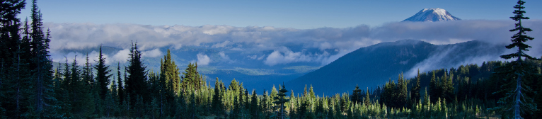 - Mountain Valley Real Estate - Packwood, Washington